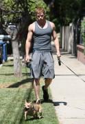 Kellan Lutz walking the dogs - July 15th, 2010 03a9eb88773013